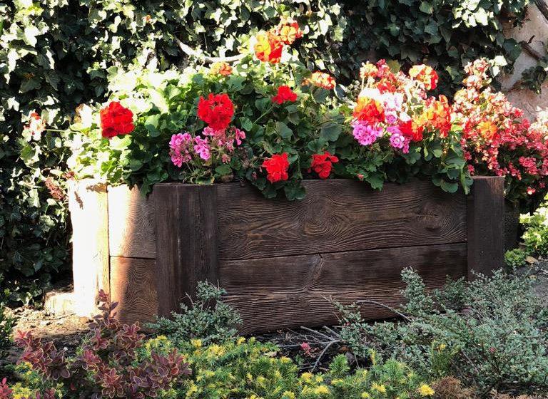 Betonowe drewno w domu i ogrodzie